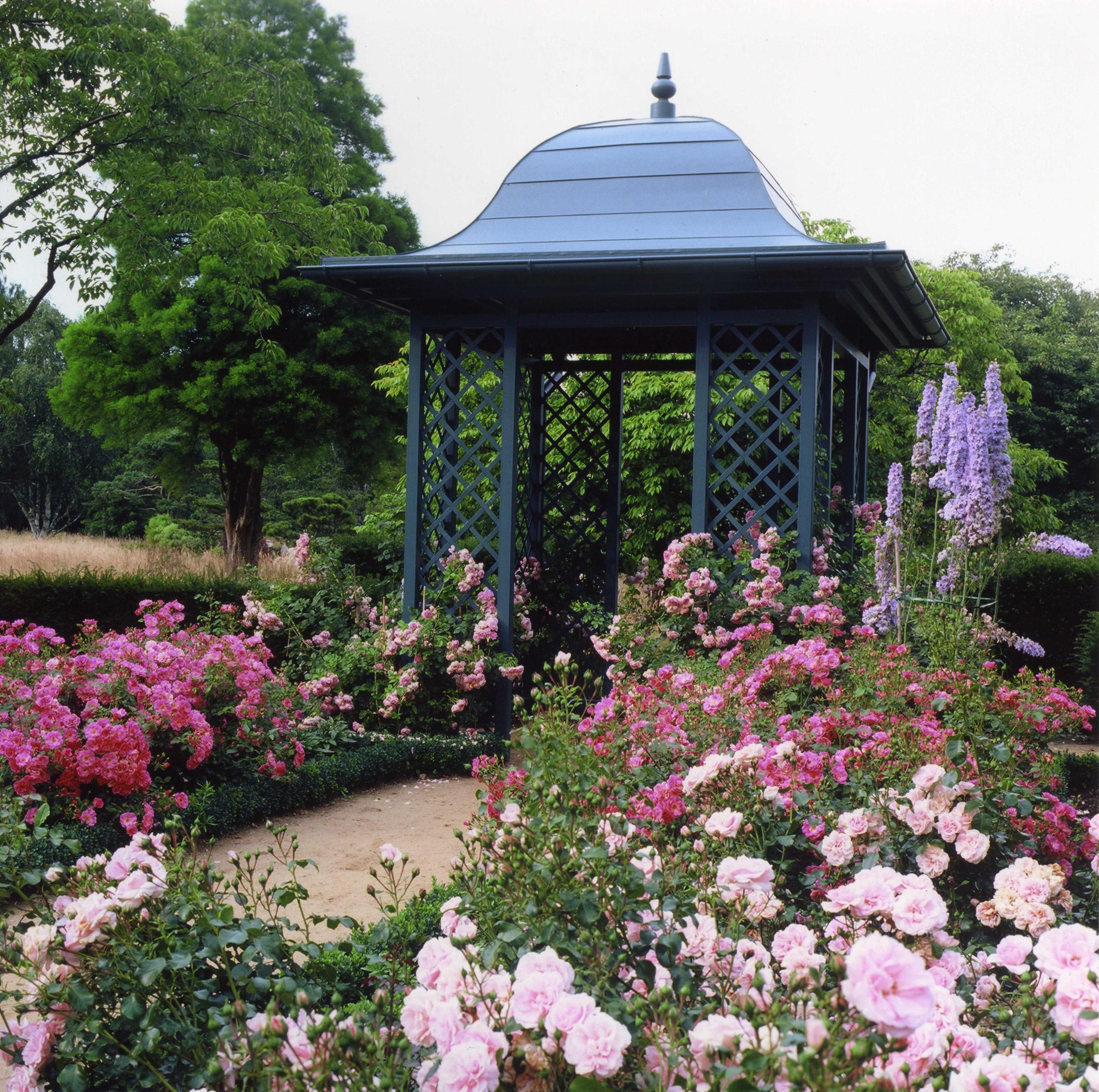 ロムレー湖畔共和国・アンゼロット記念大学付属植物館バラ園